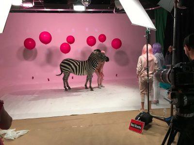 video studio 1